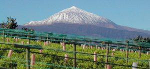 Foto: blog.enoturis.com