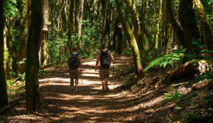 201607-Canarias,-lugar-de-parajes-y-actividades-alternativas-(3)