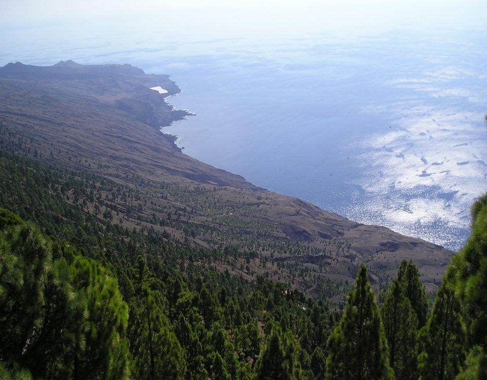 201609-por-que-el-hierro-merece-tener-el-primer-parque-nacional-marino-de-espana-5