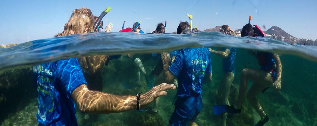 snorkeling-experience-ecoturismo-fluyecanarias-2