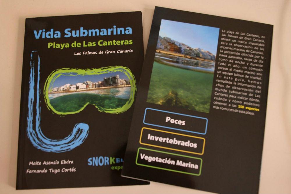 snorkeling-experience-ecoturismo-fluyecanarias-vida-submarina-las-canteras