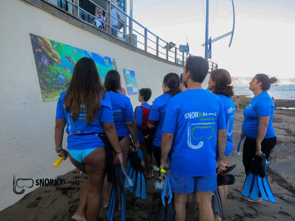 snorkeling-experience-ecoturismo-fluyecanarias