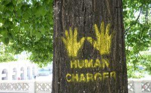 1 Arte urbano y naturaleza la combinacion perfecta