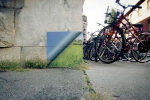 23 Arte urbano y naturaleza la combinacion perfecta