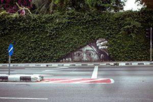 7 Arte urbano y naturaleza la combinacion perfecta