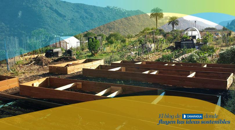 Huerto Fluye Canarias