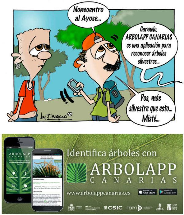Arbolapp Canarias 1