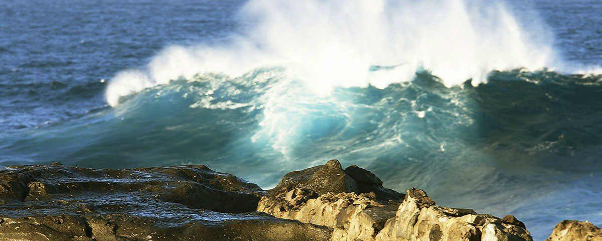 Semana Mundial del Agua canaragua Canarias Fluyecanarias 2