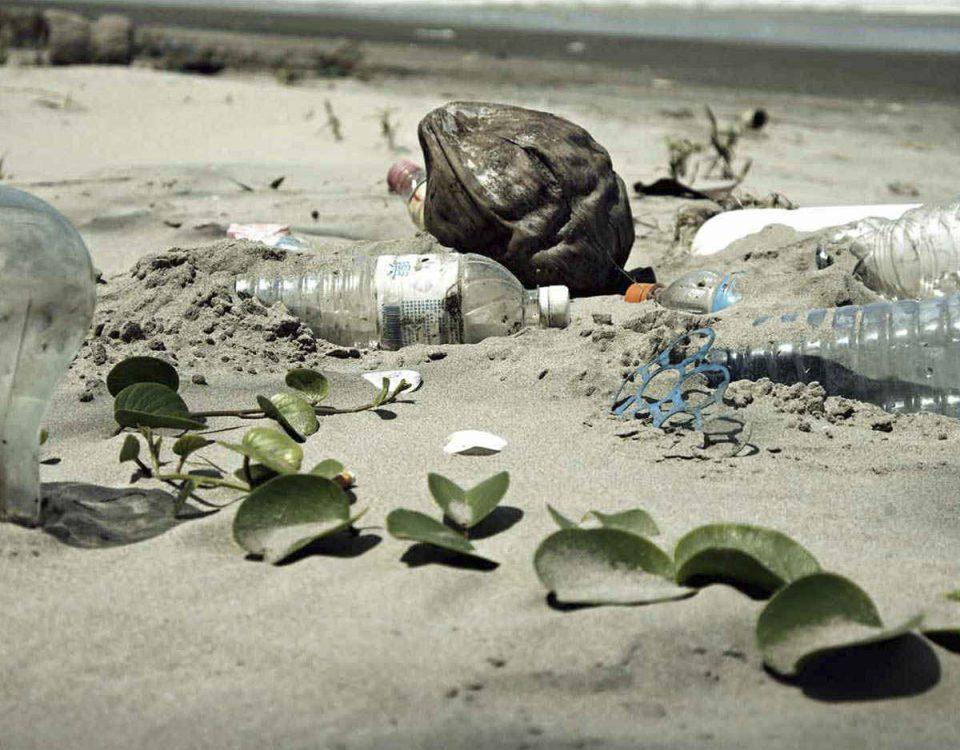 basuras marinas fluyecanarias