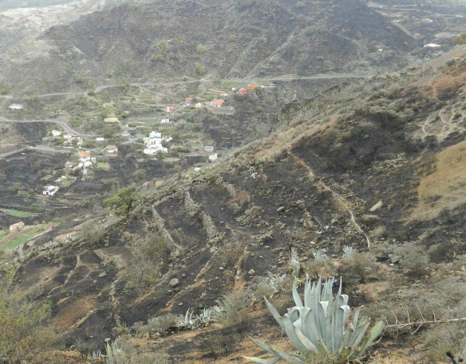 201710 Incendio de Gran Canaria extinguido
