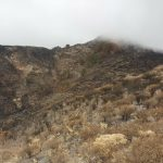 La cumbre de Gran Canaria un mes despues del incendio 1