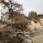La cumbre de Gran Canaria un mes despues del incendio 12