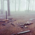 La cumbre de Gran Canaria un mes despues del incendio 19