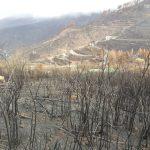 La cumbre de Gran Canaria un mes despues del incendio 4