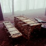 La cumbre de Gran Canaria un mes despues del incendio 5