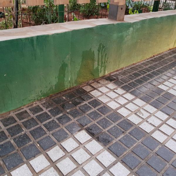201807 El pis de los perros muy nocivo para las farolas y el mobiliario urbano 1
