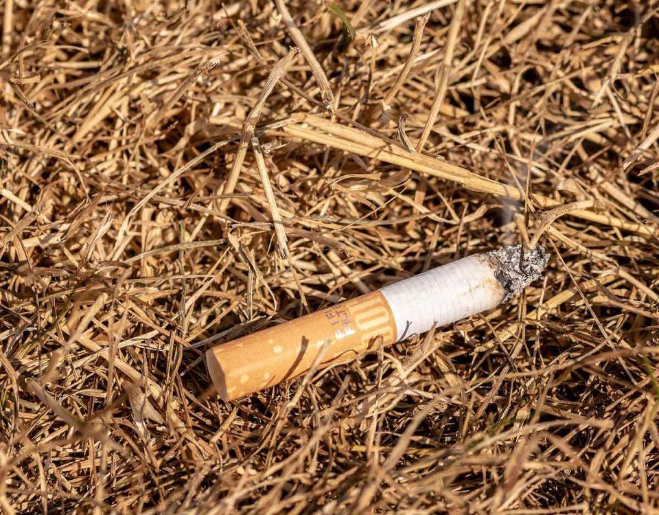 4,5 billones de cigarrillos terminan depositados en la naturaleza