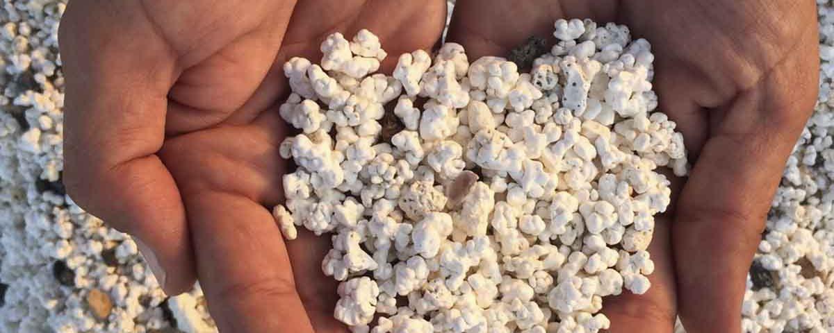 201812 Fuerteventura se vuelve viral gracias a su popcornbeach
