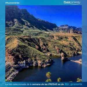 201901-FLUYE-Ganador-semana-PRESAS1