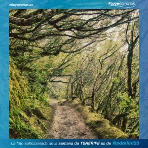201901-FLUYE-Ganador-semana-TENERIFE1