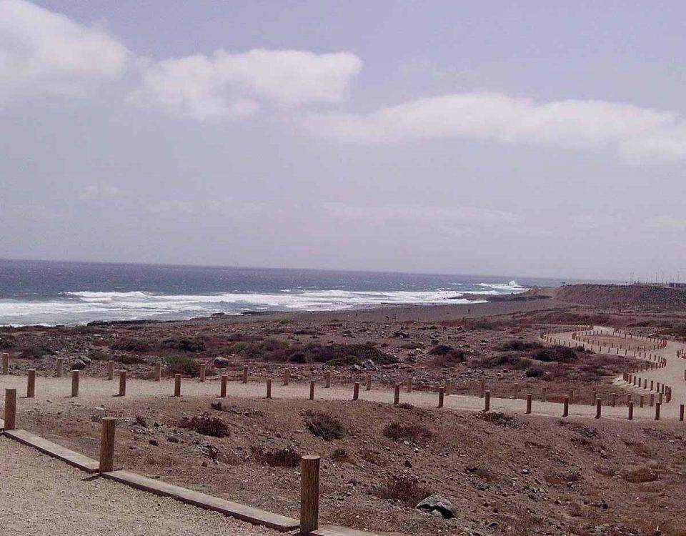 201905 Limpieza de playas Gran Canaria