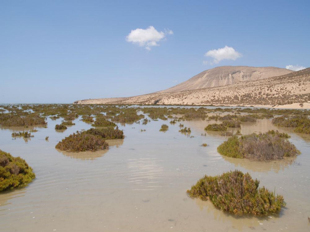 La resiliencia del territorio, una necesidad para Canarias