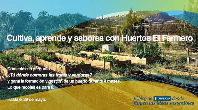 Huertos-El-Farmero-fluyecanarias-bases
