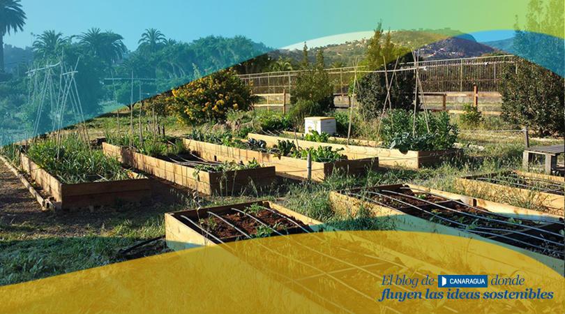 Huertos-El-Farmero-fluyecanarias-interior