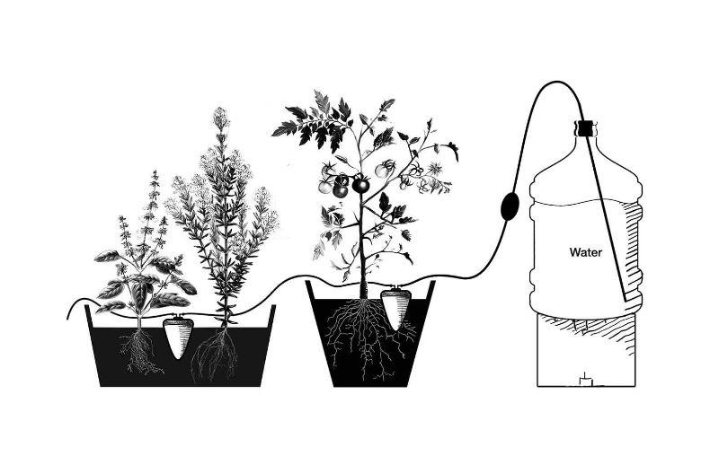 sistema vaso de ceramica fluyecanarias
