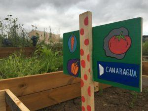 Huerto de Fluye Canarias - Canaragua.
