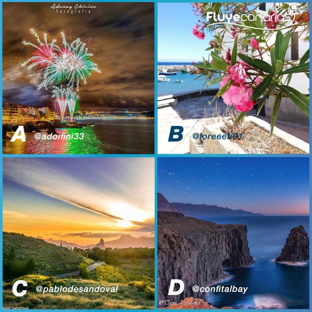 Finalistas Semana Multicolor Fluye Canarias