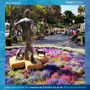 201905-FLUYE-Ganador-semana-COLOR-LILA