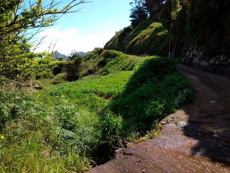 Barranco de la Porquera, parque rural de Anaga