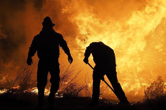 Cinco de los incendios forestales en La Palma en 2020 fueron intencionados