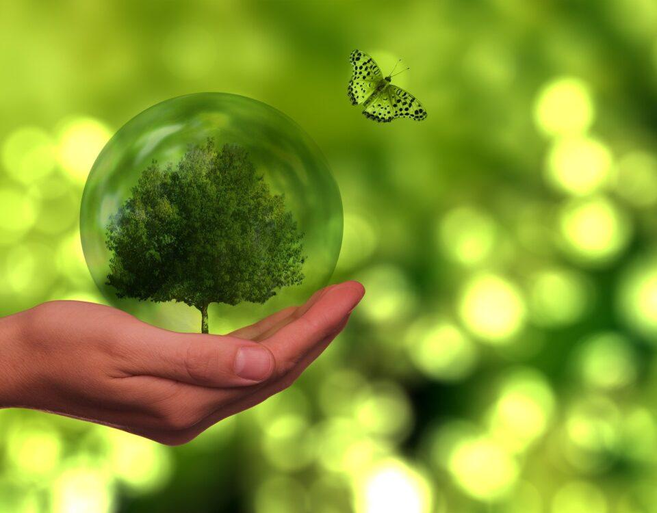 Somos+Sostenibles